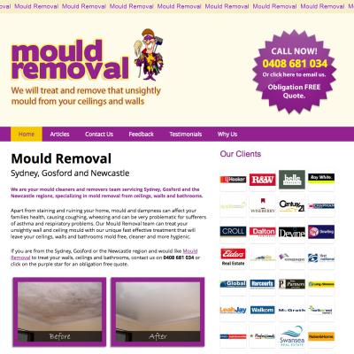 website-design-mould-removal