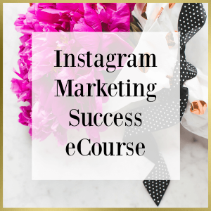 Instagram Marketing Success ecourse